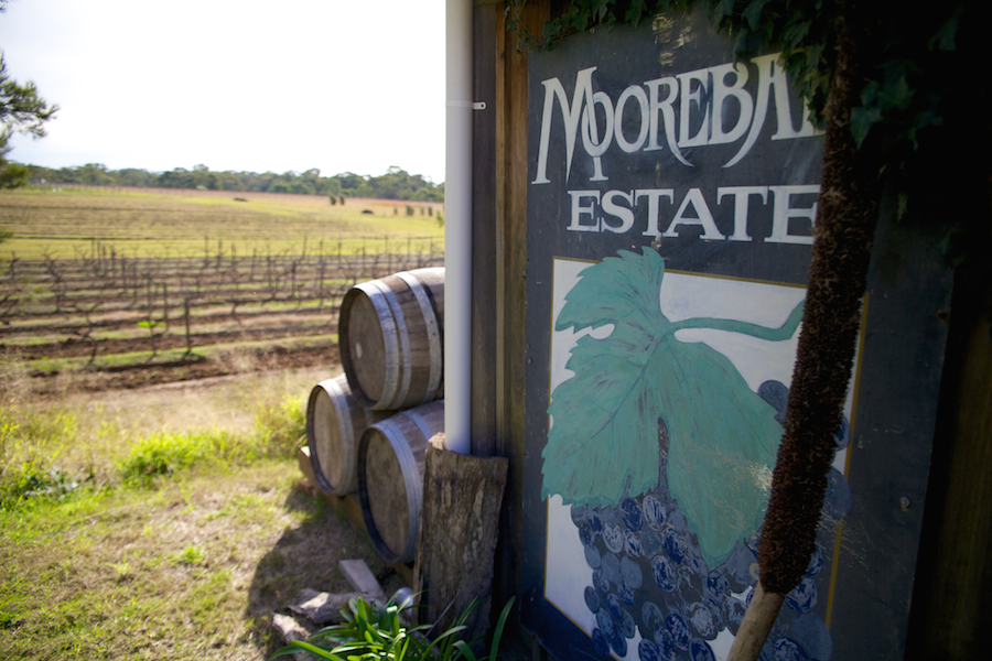 Moorebank Private Vineyard and Estate Hunter Valley travel guide