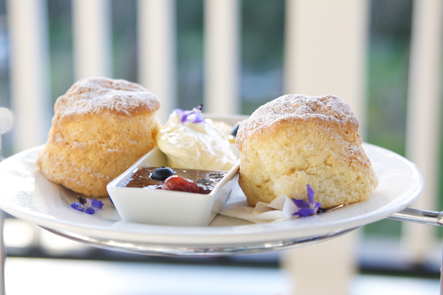 Fresh scones and jam at Peppers Convent.