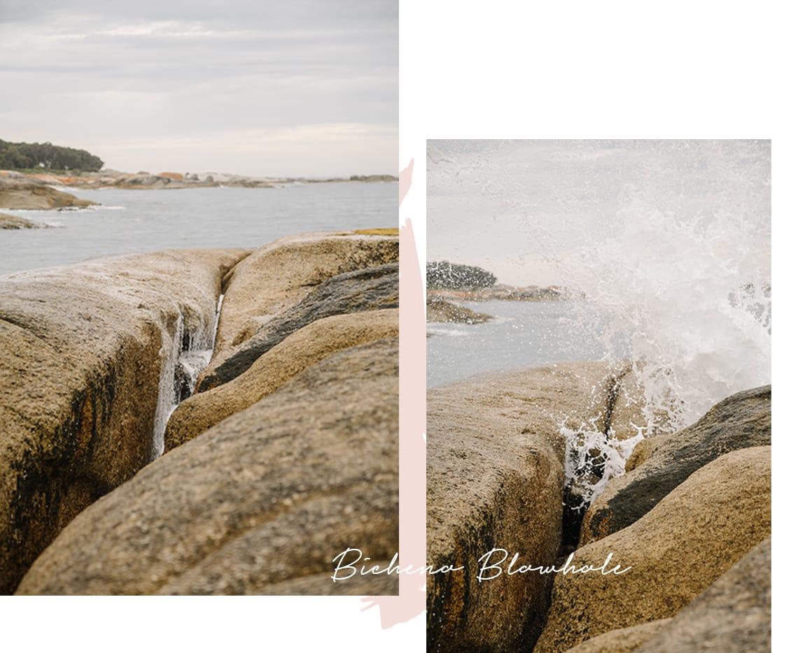 Bicheno Blowhole Tasmania Collage