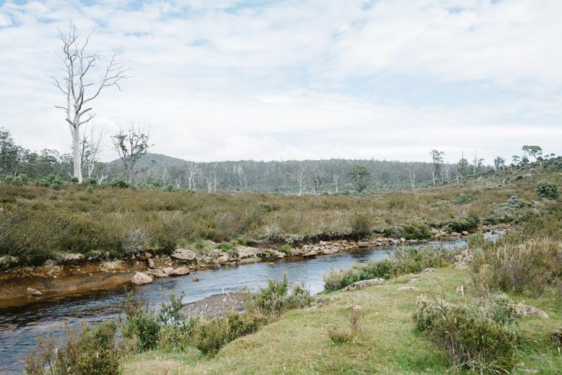 Creek near Cradle Mountain in Tasmania.