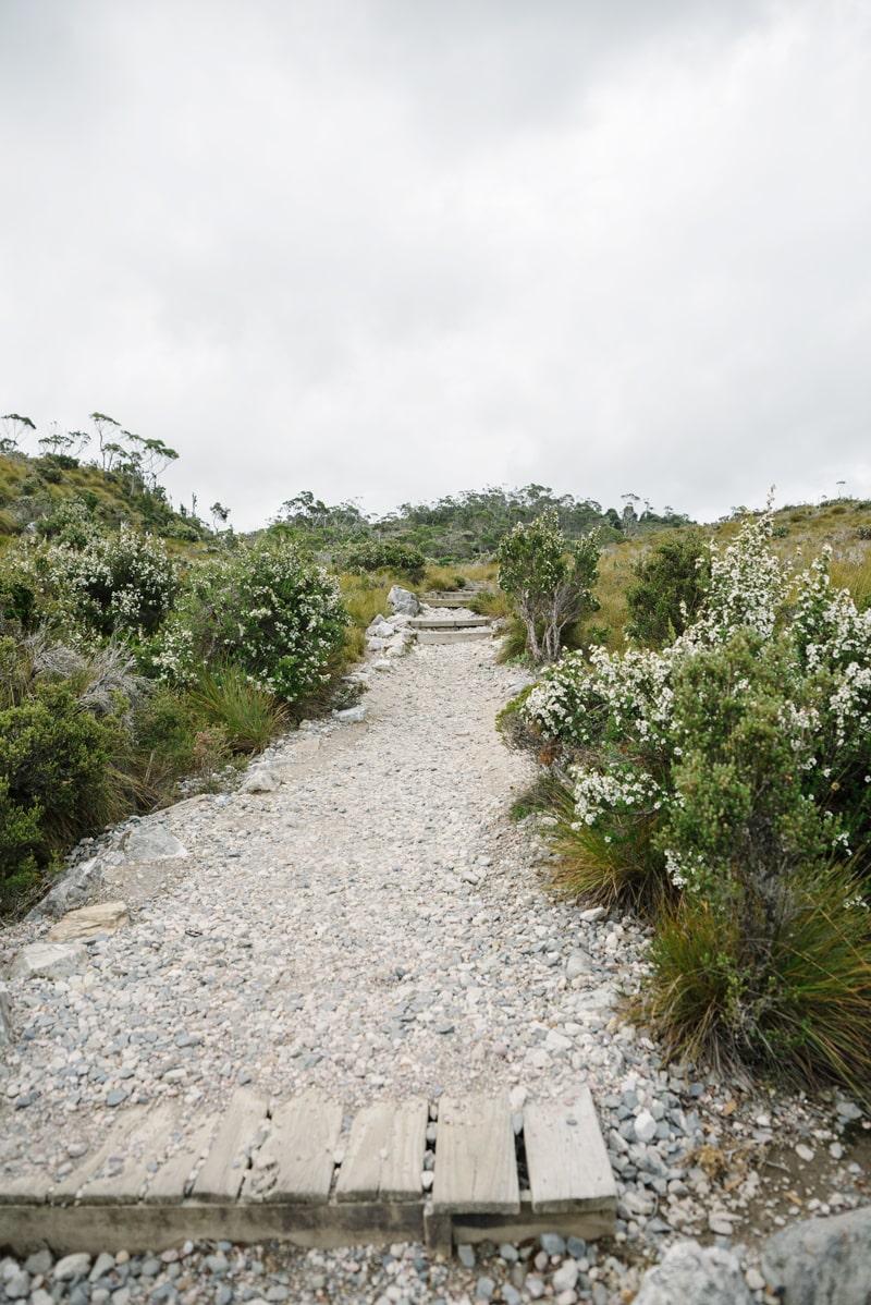 Dove Lake walking trail at Cradle Mountain.