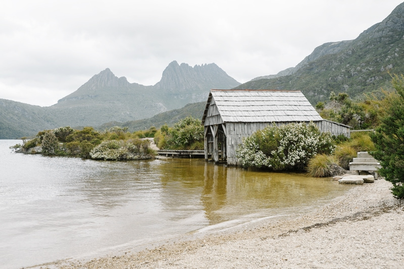 Dove Lake waterfront at Cradle Mountain.