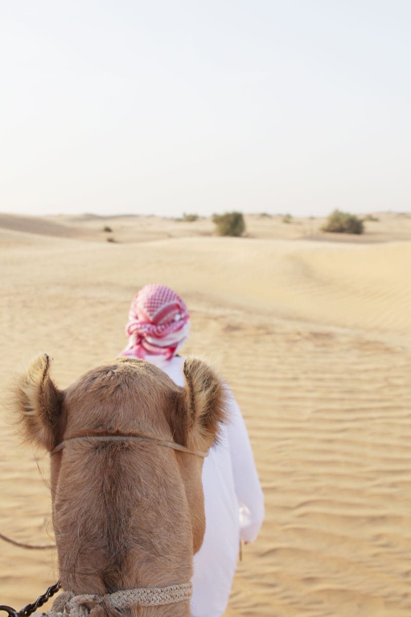 Dubai desert safari review