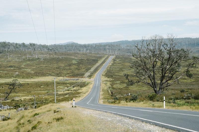 Road to Cradle Mountain in Tasmania.