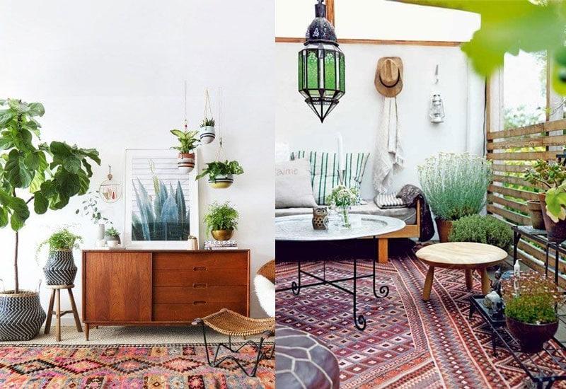 aztec-rugs-with-indoor-plants
