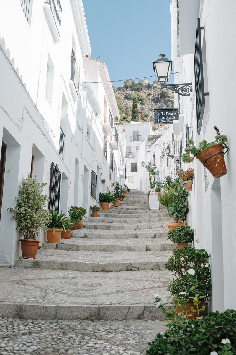 Pot plants line the white streets of Frigiliana.